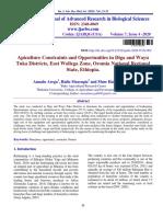 Journal 2 Beekeeping Constraints