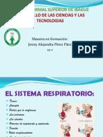 diapositivasdeciencias-111103140827-phpapp01