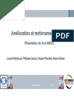 07_FNTP_CFMS_Plumelle_Liausu.pdf