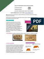 GUÍA NODO DE PENSAMIENTO CRÍTICO- SEXTOS. (2).pdf
