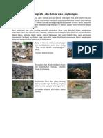 IX Interaksi Antara Tingkah Laku Sosial Dan Lingkungan