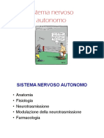 sistema nervoso simpatico-parasimpatico