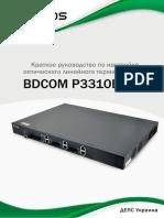 Manual_P3310_Rus_22022013.pdf