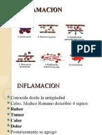 inflamacion aguda (1)