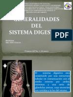 sistema digestivo FINAL.pptx
