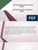DIAPOSITIVA-APEC