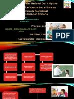 BHELU GUADALUPE QUISPE LARICO_42487_assignsubmission_file_PRINCIPIOS PEDAGÓGICOS DEL JUEGO.pptx