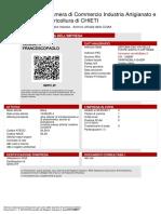 visura 21.11.17.pdf