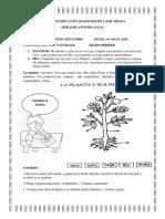 CIENCIAS NATURALES II PERIODO GRADO PRIMERO