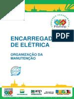 Enc Eletrica - ORGANIZAÇÃO DA MANUTENÇÃO.pdf