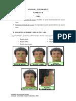 ANATOMIA TOPOGRAFICA-regiones superficiales de la cara.pdf