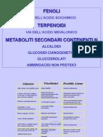 Prof._Ranieri_-_Composti_fenolici.pdf