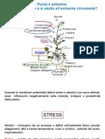 metaboliti-e-difesa