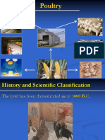 Chapter 6 Poultry Production