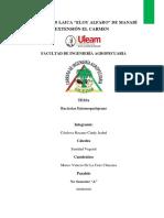 bacterias informe segundo parcial .pdf