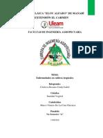 enfermedades en cultivos tropicales TAREA 1.pdf