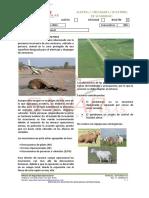 Boletin 04 Ene-Feb 16.pdf