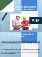 INSPECCIONES DE SEGURIDAD Y AUTO CUIDADO EN EL TRABAJO