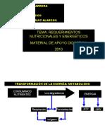 REQUERIMIENTOS NUTRIC Y ENERGÉTICOS.ppt