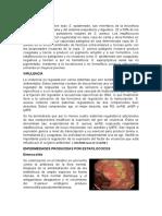 Enfermedades, virulencia, patogenia