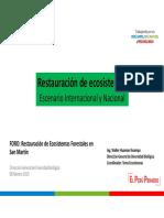 PP2-RestauracionyEscenariosInternacionalNacional-MINAM-2019-02-21