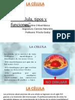 TAREA 10 3NB APUNTE VESPERTINO LA CELULA, TIPOS Y FUNCIONES