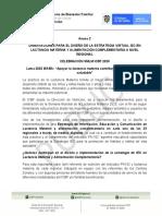Anexo2_Orientaciones_para_el_ diseño_estrategiaIECenLM