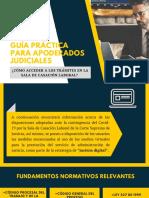 GUÍA PRÁCTICA PARA APODERADOS JUDICIALES