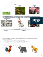 CIENCIAS NATURALES PRIMER TALLER-3-4