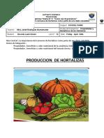 LAS HORTALIZAS.docx