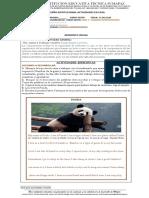 7 GUIA- READING COMPREHENSION- 6°