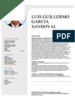 HOJA DE VIDA - LUIS GARCIA SANDOVAL (1)