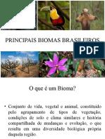 PRINCIPAIS BIOMAS BRASILEIROS trabalho.pptx