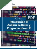Brochure Curso Introducción al Análisis de Datos y Programación en R.pdf