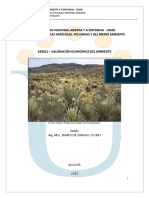VALORACION ECONOMICA DEL AMBIENTE.pdf