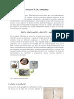 REACCIÓN ÁLCALI.docx