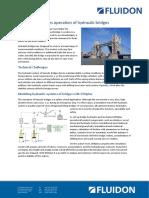 FLUIDON - Case Study DSHplus for Bridge Hydraulics