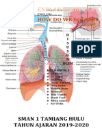 Explanation Text how do we breath