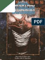 Fundación Valkenburg.pdf