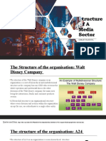 Structure Of  A Media sector.pptx