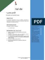 Memorial de Calculo Proteção via Guarda Corpo.pdf
