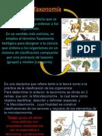 presentaciondetaxonoma-130520223326-phpapp02