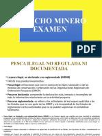 Examen Minero.pptx