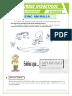 El-Reino-Animalia-para-Segundo-de-Secundaria.doc