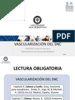 Clase 34 Vascularización del SNC_DBIO1050.pdf