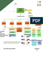MAPA CONCEPTUAL EXODONCIA QX- TAREA 1-convertido (6)-convertido (2)