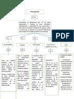 Mapa conceptual Presupuesto.docx