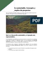 Desarrollo sustentable y sostenble my9 2020.docx