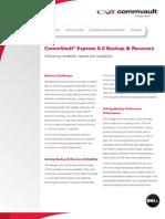 CommVault Express 80 Datasheet