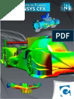 Simulacion de Fluidos en Ansys Cfx -Sesion 5- Ejemplo 1
